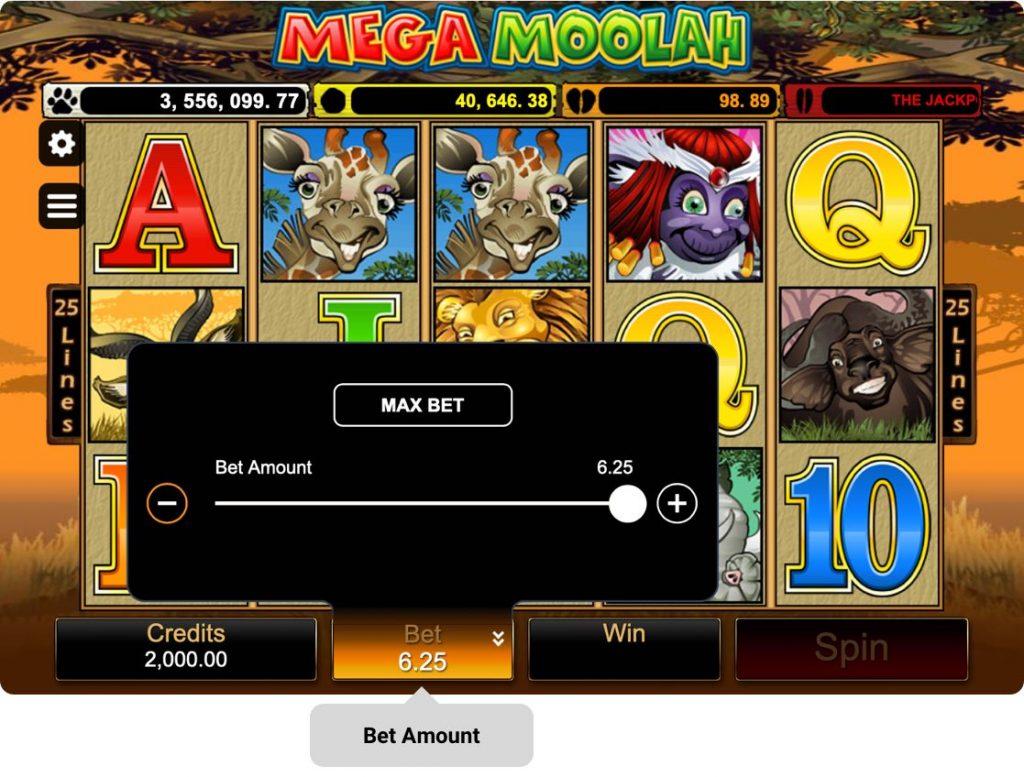 Mega Moolah Online Slot Game Bet Amount
