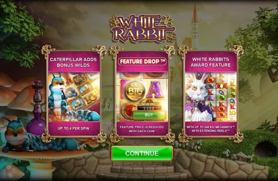 White Rabbit features